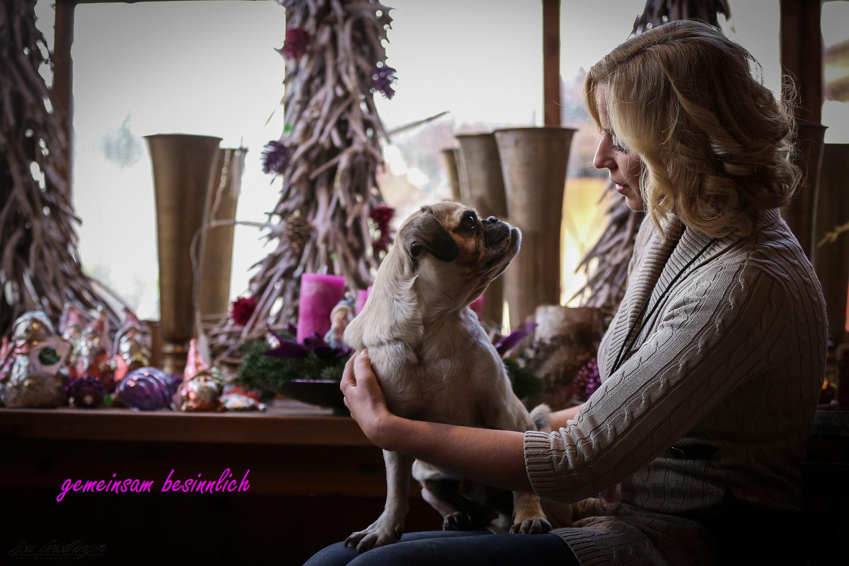 Allgemein – Hundetraining Schar